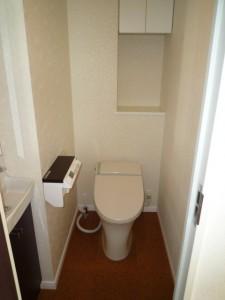 トイレ・エコカラット1