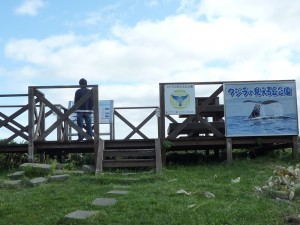 クジラの見える丘公園