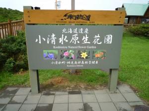 小清水原生花園1