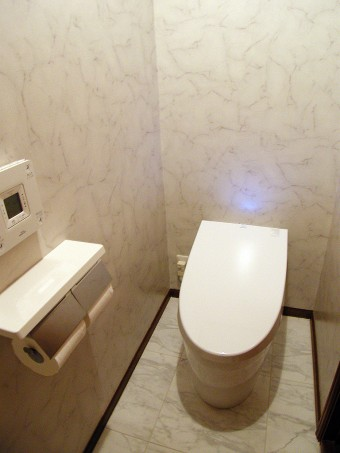 高品質の大理石水磨き調床タイルとハイブリッド節水トイレ
